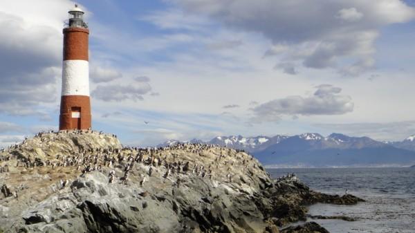Ile aux cormorans