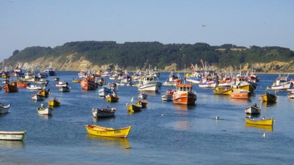 17- port de pêche