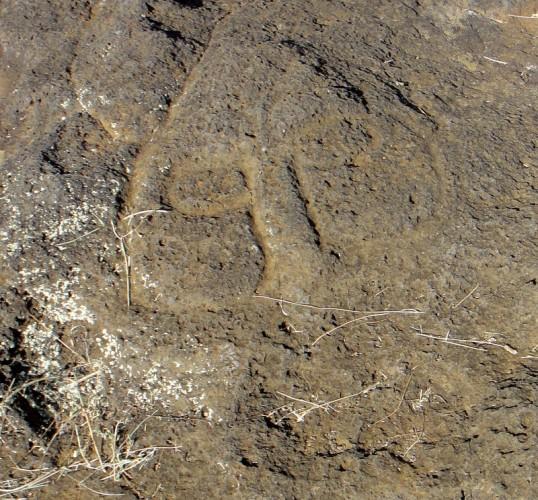 22-symbole rongo rongo