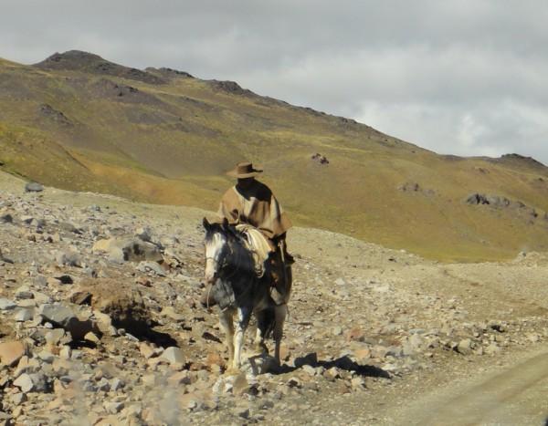4-I'm a lonesome cowboy