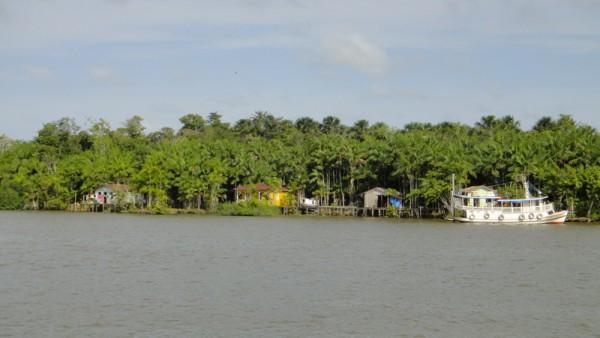 06-bus fluvial