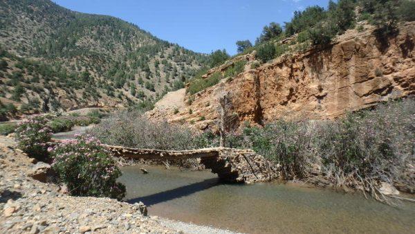 petit pont pour piétons