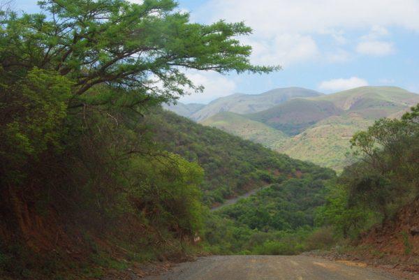 01-au Swaziland