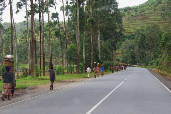 03-ils marchent tous au Rwanda