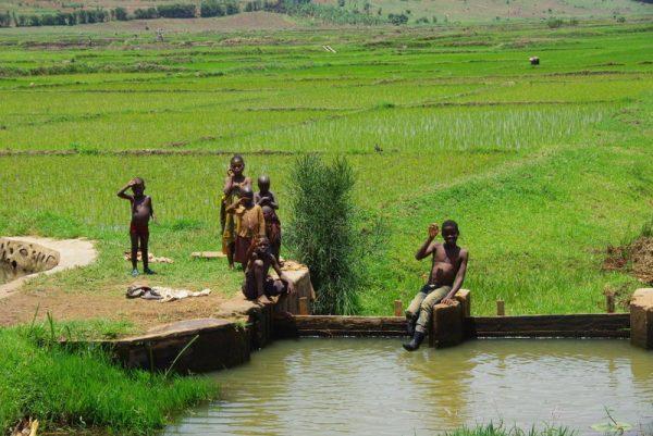 09-enfants devant des rizières