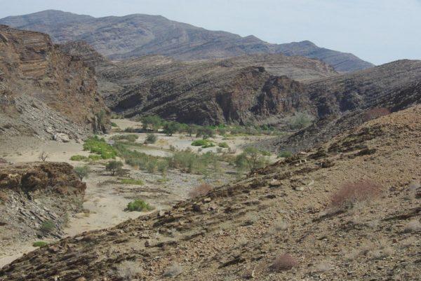 11-désert du Namib