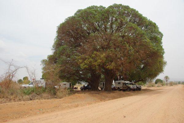 20-bivouac sous le manguier