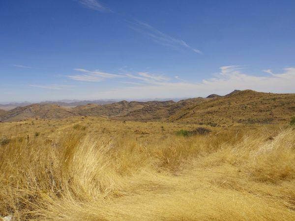desert namib2