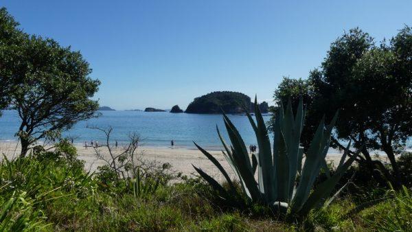 04-vue sur le Pacifique
