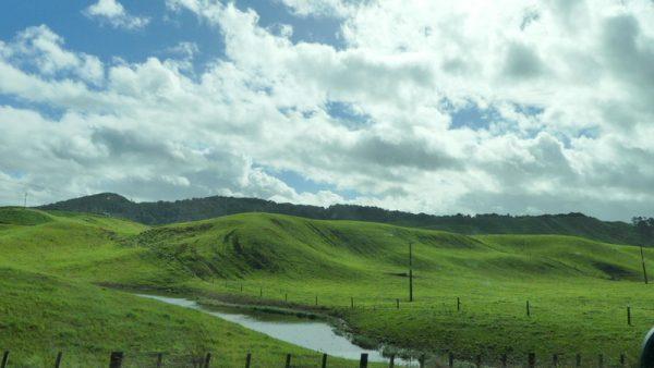 15-paysage de colline