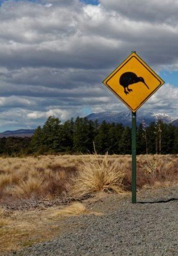 nouvelle-zelande-avec panneau kiwi