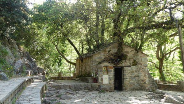 02-la chapelle aux arbres