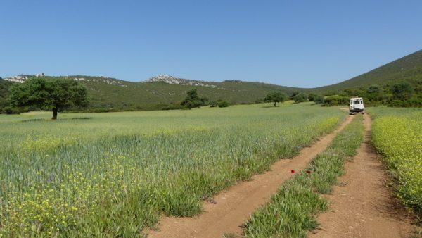 25 et tout à coup, une vallée suspendue cultivée